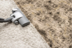 Why All Carpet Cleaners In Brisbane Are NOT The Same
