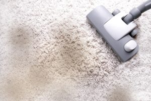 5 Reasons to use Professional Carpet Cleaning Services